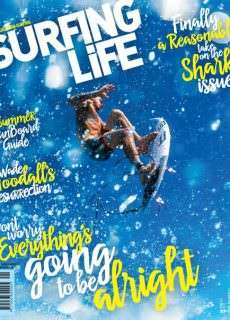 Surfing Life – January 2016