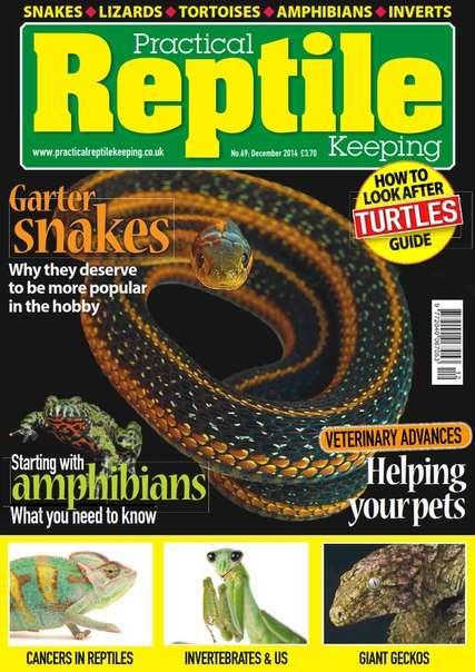 Practical Reptile Keeping December 2014 UK