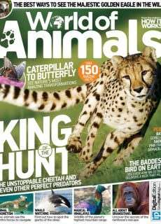 World of Animals – Issue 22  2015.