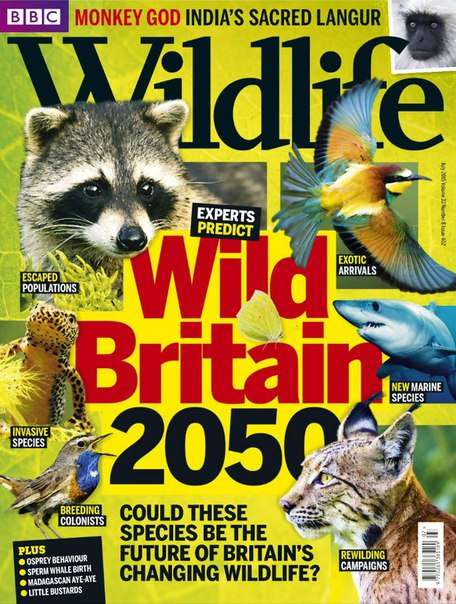 BBC Wildlife – July 2015