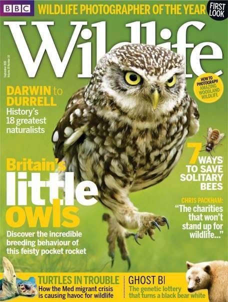 BBC Wildlife – September 2015 UK