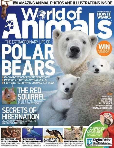 World of Animals Issue 13