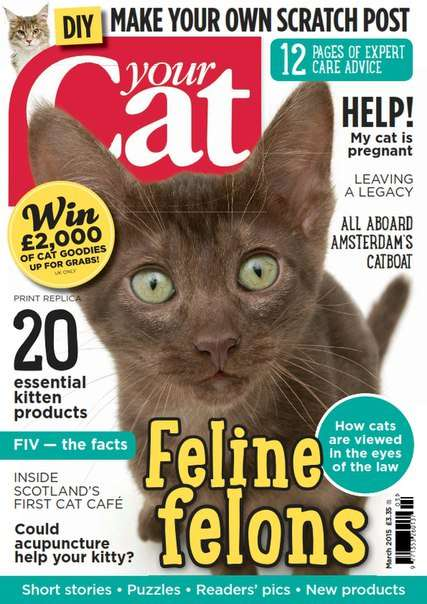 Your Cat – March 2015