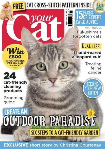 Your Cat – April 2015