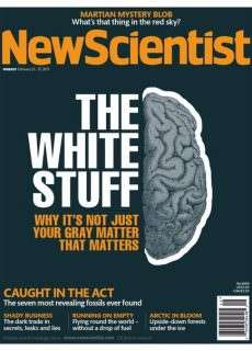 New Scientist – 21 February 2015