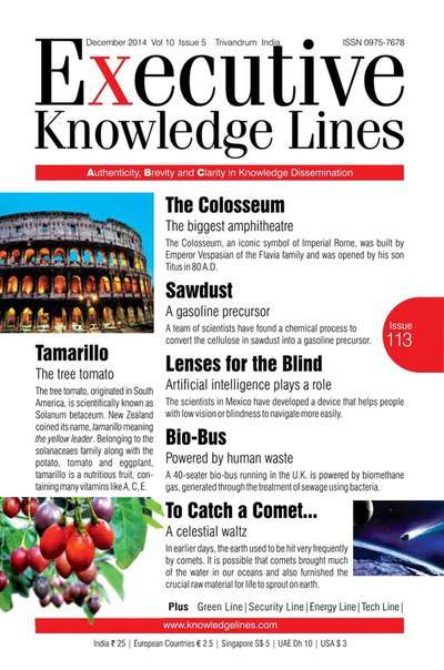 Executive Knowledge Lines, Volume 10 Issue 5 – December 2014