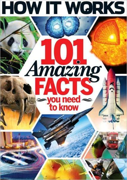 How It Works 101 Amazing Facts You Need To Know