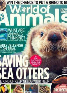 World of Animals Issue 43 2017