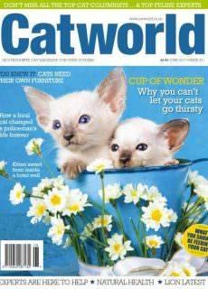 Cat World — June 2017