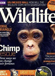 BBC Wildlife – May 2017