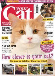 Your Cat – June 2017