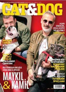 Cat & Dog – Mayıs 2017