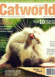 Cat World – July 2017