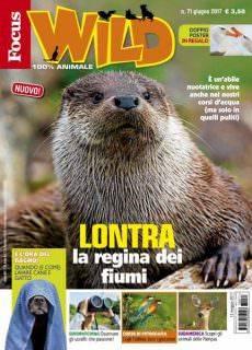 Focus Wild N.71 – Giugno 2017
