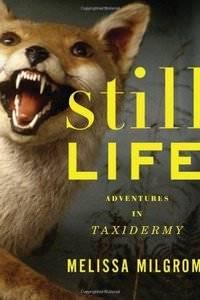 Still Life-Adventures in Taxidermy