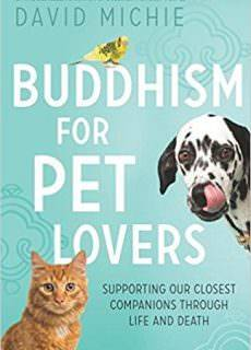 Buddhism for Pet Lovers Supporting our Closest Companions through Life and Death