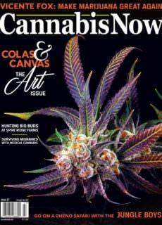 Cannabis Now — Issue 27 2017