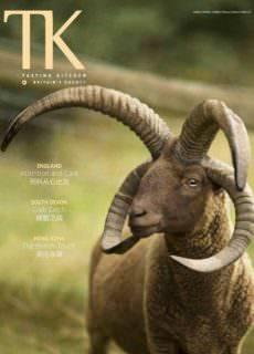 TK.Tasting Kitchen — Issue 31 2017