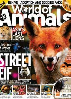 World of Animals UK – November 2017