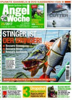 Angel Woche — 15. November 2017
