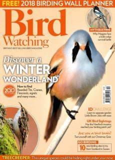 Bird Watching UK — December 2017