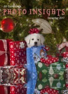 Photo Insights — December 2017