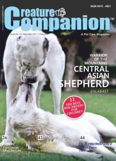 Creature Companions — November 2017
