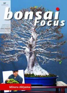 Bonsai Focus (French Edition) – janvier février 2018