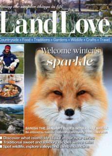 LandLove — January 2018