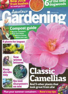 Amateur Gardening — 27 January 2018