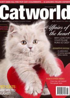 Cat World — February 2018