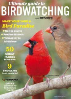 Birdwatching USA — Ultimate Guide to Birdwatching — Fall-Winter 2017