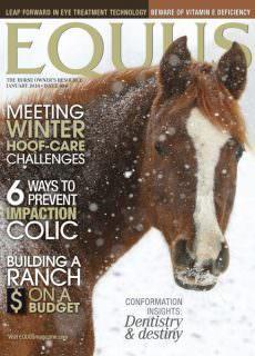 Equus — January 2018