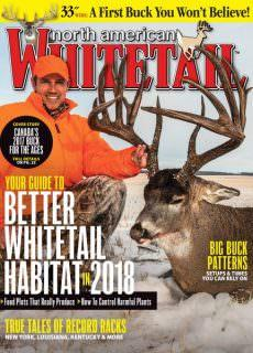 North American Whitetail — January 08, 2018