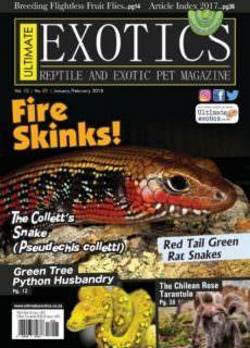 Ultimate Exotics — January-February 2018