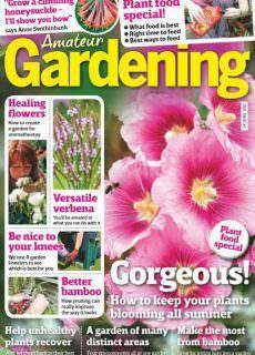 Amateur Gardening — 24 June 2017