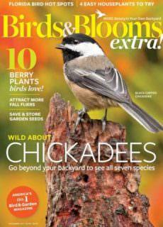 Birds and Blooms Extra — November 2017