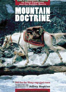 Mountain Doctrine Tibet's Fundamental Treatise on Other-Emptiness and the Buddha Matrix