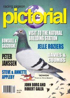Racing Pigeon Pictorial International – June 2018