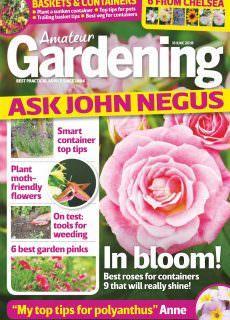 Amateur Gardening – 16 June 2018