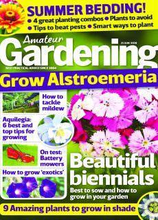 Amateur Gardening – 23 June 2018